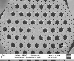 REM-Bild einer Preform für die Herstellung einer mikrostrukturierten Faser, deren Kernbereich aus Nd2O3 dotiertem Glas besteht.
